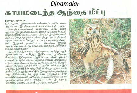 dinamalar news mail