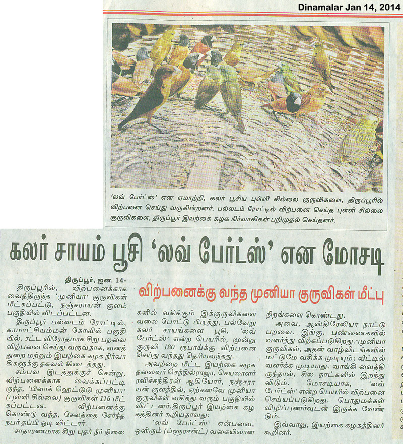 dinamalar munia rescue jan 14