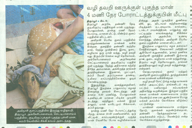 deer rescue dinamalar